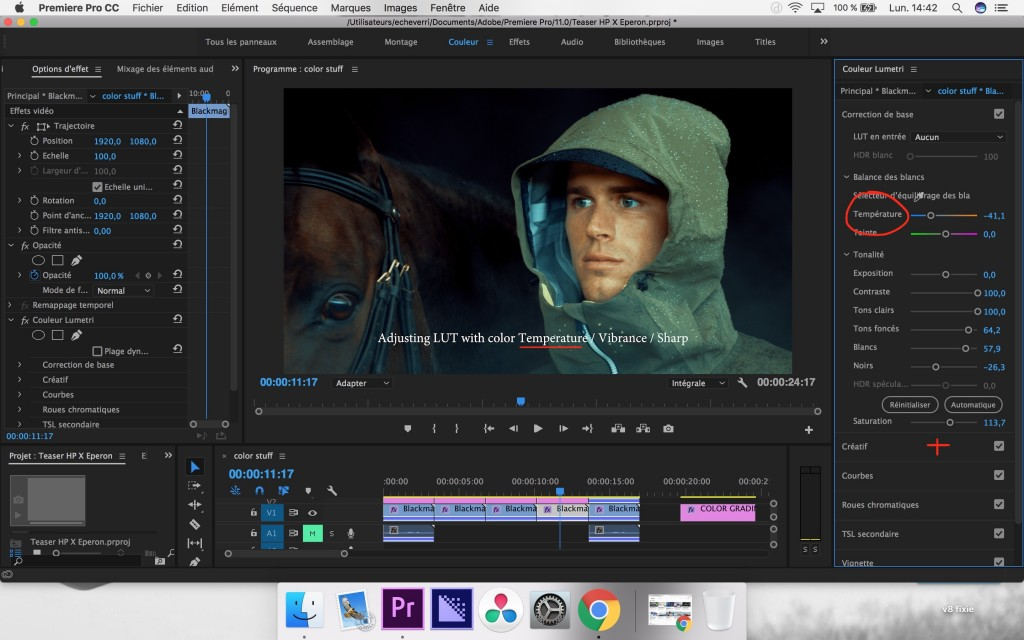 how to color grade in premier pro prores log step4